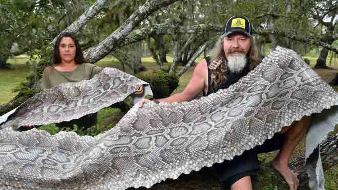 Photo of Dusty Crum and his girlfriend, holding python skin.